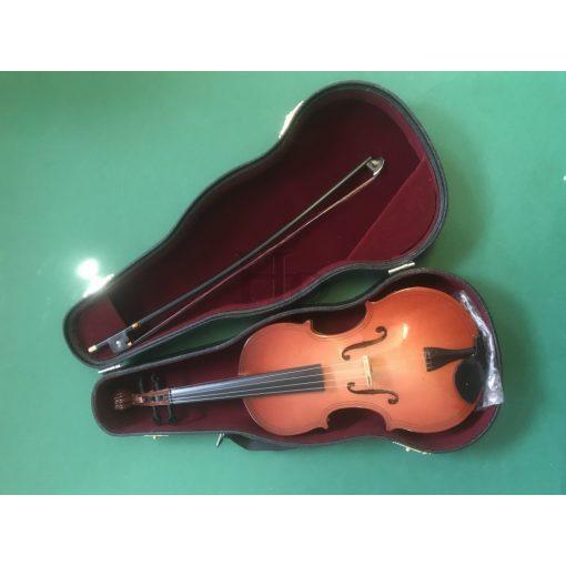 Hegedű tokkal